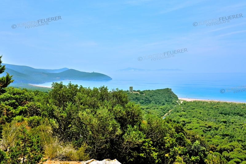 Typical landscape of Maremma with watch towers, Southern Tuscany, acient farming land, comquiered back by nature, Italy