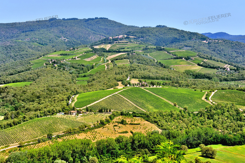 Landscape od Tuscan vineyards near Radda in Chianti, Tuscany, Italy