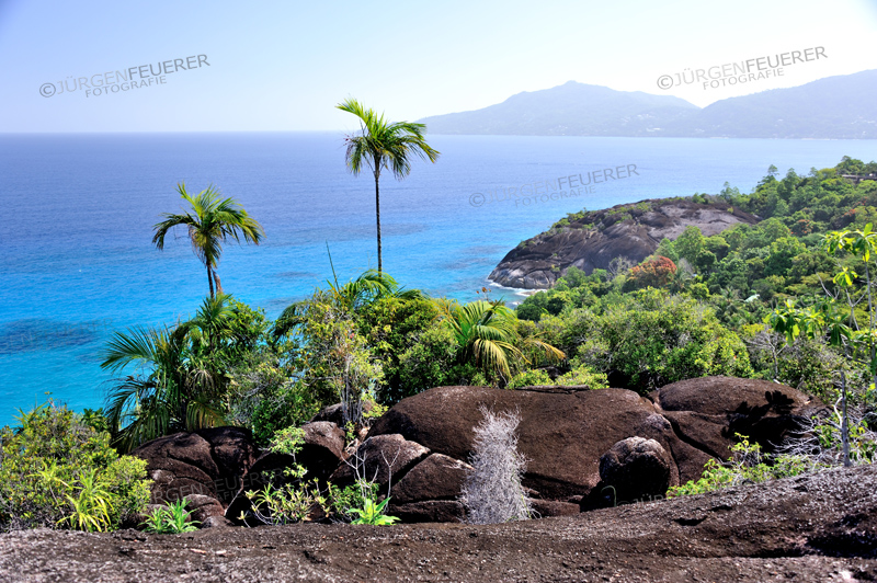 Schwarzer Granit auf Mahé, Seychellen