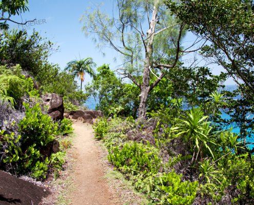 Anse Majore Nature Trail
