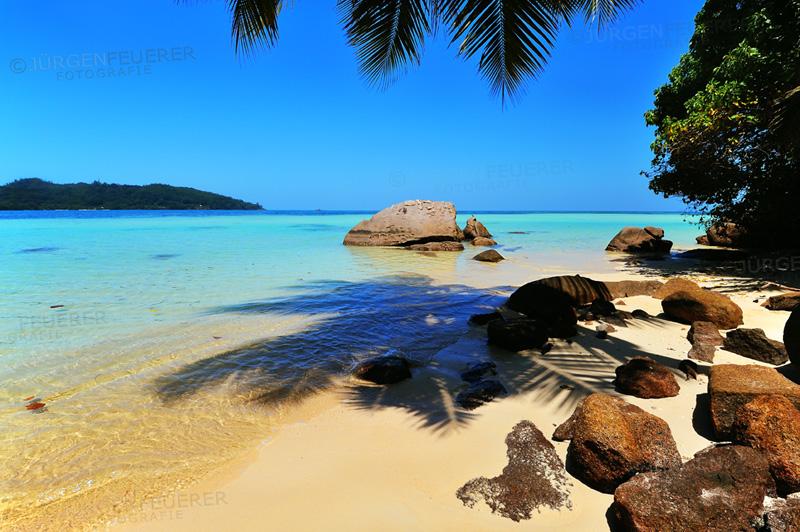 Anse a la Mouche, Seychellen