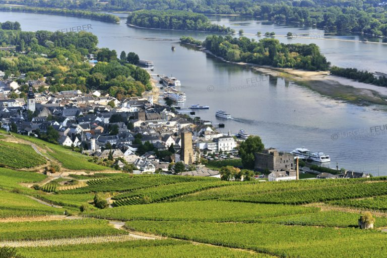 Rüdesheim am Rhein and vineyards, Upper Middle Rhine Valley, Germany